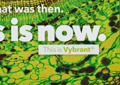 Buckman Vybrant® Direct Mail Campaign